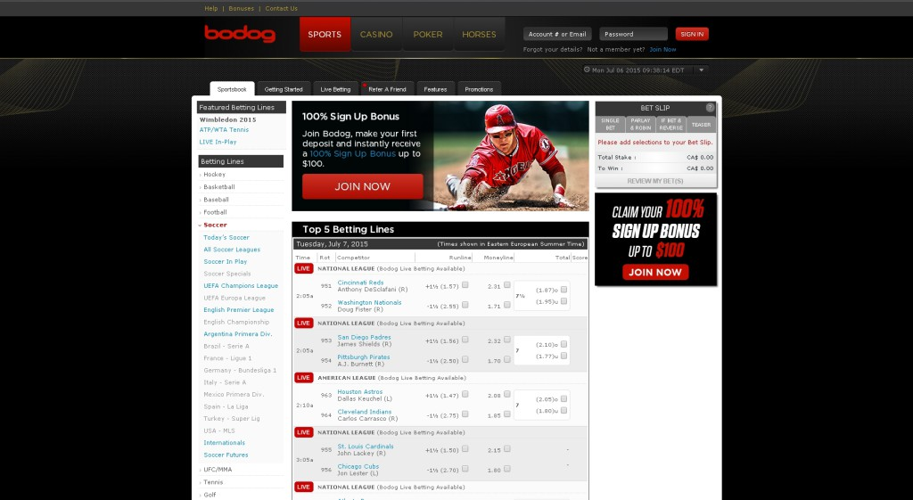 bodog sports betting review